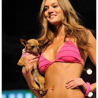 Cosmopolitan Bikini Show 2011 csivavákkal