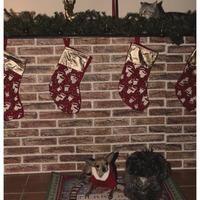 Boldog Karácsonyt! :)