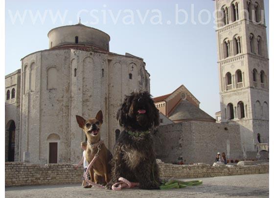 csivava-blog-2012-zadar-3.jpg
