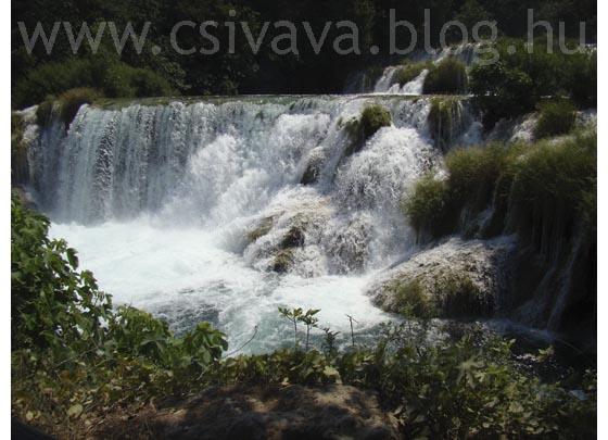 csivava-blog-2012-zadar-92.jpg