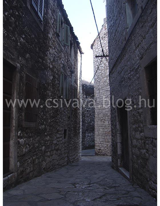 csivava-blog-2012-zadar-98.jpg