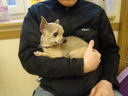 bambi-blog-2013-rákosliget-04-04-6.jpg