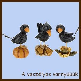 A PRAKTIKER madárkái 2 - 13.05.08.jpg