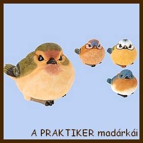 A PRAKTIKER madárkái jav. 13.05.08.jpg