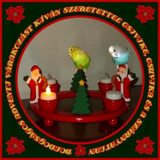Advent 2013 1.jpg