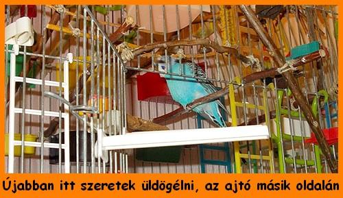 18_09_06_053.JPG