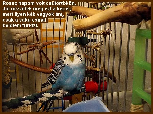 19_08_16_002.JPG