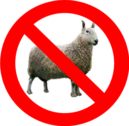 no-sheep.png