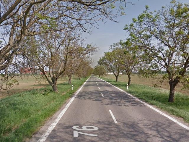Nyílt levél a közlekedésügyi miniszterhez a Zselízt és Lekért összekötő úttal kapcsolatban