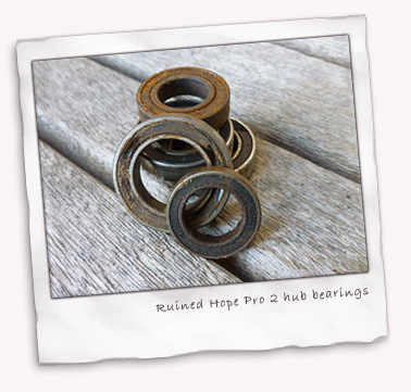 hope-pro2-worn-bearings.jpg
