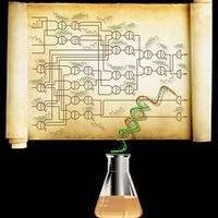 DNS-számítógépek a kémia programozhatóságáért