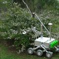 Robottal pótolnák a beporzáshoz hiányzó méheket