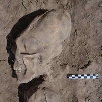 Furcsa koponyák egy mexikói ásatáson