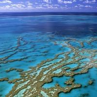 Robot tengeralattjáró védi majd a Nagy-korallzátonyt