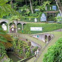 Madeira - úszó virágoskert