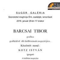 Barcsai Tibor grafikus kiállítása a Sugár Galériában