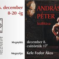 Andráskó Péter kiállítás a Tár-Lak Szalonban