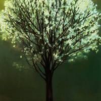 Fák - Őry Annamária kiállítása a Rondellában