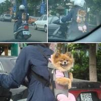 Zavarbaejtő tajvani közlekedés