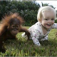 Embergyerek és orángutángyerek barátsága