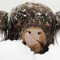 Készüljünk a havazásra!