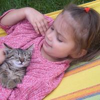 Na így boldog egy kiscica