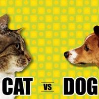 Kutyák a macskák ellen