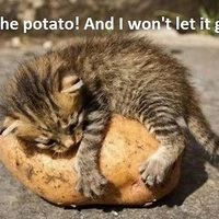 Szeretem a krumplit