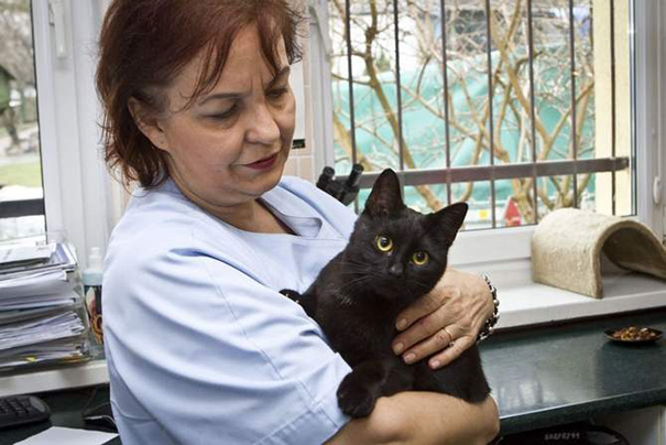 veterinary-nurse-cat-hugs-shelter-animals-radamenes-bydgoszcz-poland-2.jpg