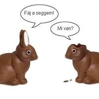 Csokinyuszi, csokitojás, csokihúsvét