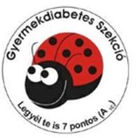 IX. Országos Gyermekdiabétesz Nap - 2014. január 11. Miskolc