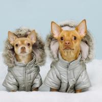 Extra hideg, extra hó!