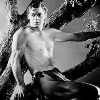 Miért nem volt szakálla Tarzannak?