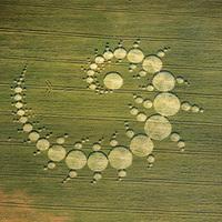 Miért pont a Fibonacci számok mozgatják a világmindenséget?