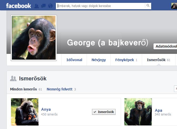 fb_chimp2.jpg