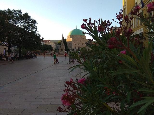 Pécs - Az egyetem városom