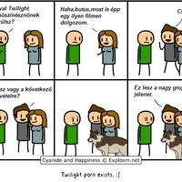 Twilight pornó