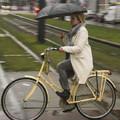 Hogyan bringáznak a hollandok, ha esik az eső?