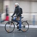 Így bringáznak a bécsiek a fagyban / Vienna-Wien-winter