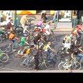2010 a bringázás éve volt - videóbizonyíték