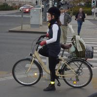 Bicaj vagy Paci?