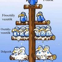 Vállalati hierarchia