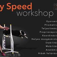 MTS - Agility Speed Workshop