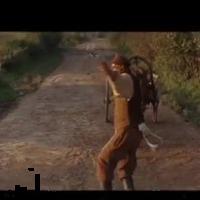 Bambi pornó rajzfilm