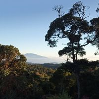 Magashegyi köderdő, Costa Rica