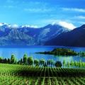Új-Zéland: így politizálnak a világ túlfelén