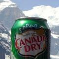 Nemek közötti egyenlőség Kanadában – az alkoholizmusban is