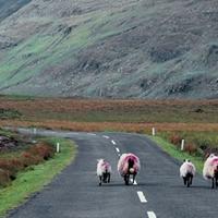 Lemaradt az ír infrastruktúra