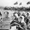 """A kínai kulturális forradalomhoz hasonlította az amerikai """"kritikus fajelmélet"""" propagandáját a Mao Ce-tung diktatúráját túlélő kínai anyuka"""