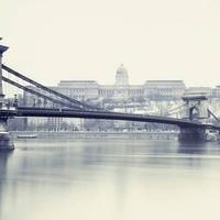 Danube Institute Internship Programme ⁄ Ösztöndíj